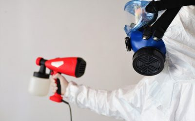 Delving in Deeper Into the Importance of Regular Home Disinfection – An Overview