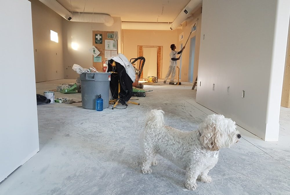 Adding More Value to Your Property Through Home Renovation